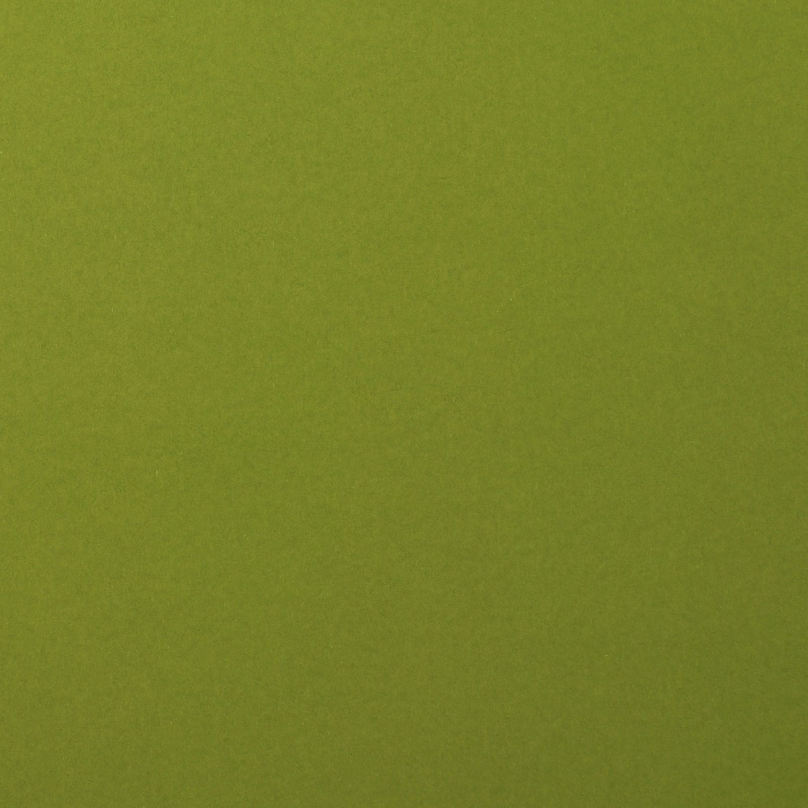 Florence Cardstock smooth Olive