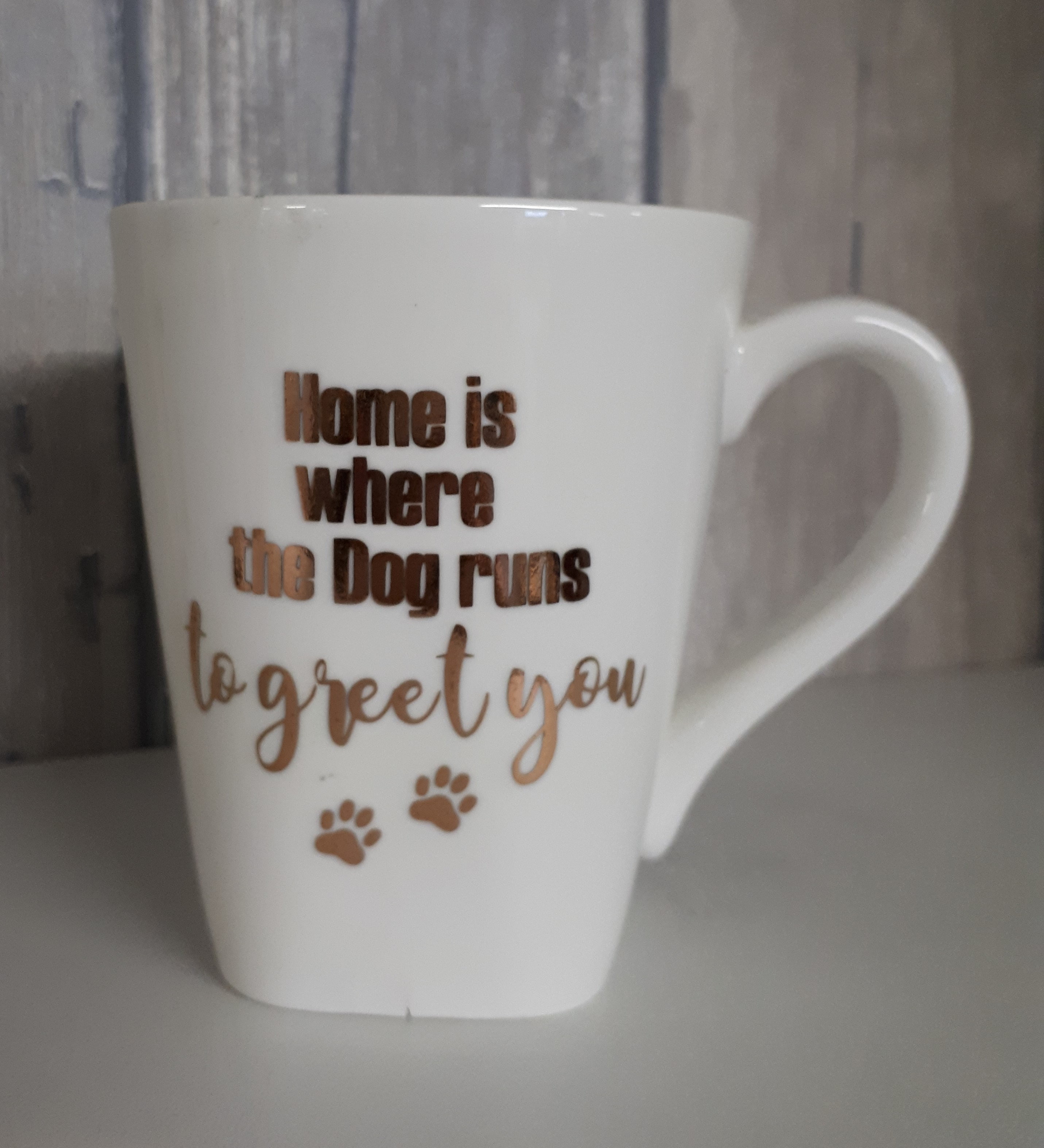 Beker....Home is where the dog runs to greet you